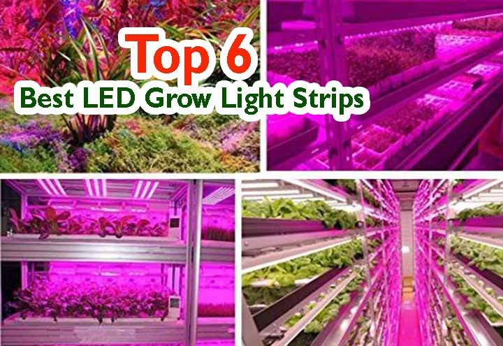5 Best LED Grow Light Strips Review On 2020